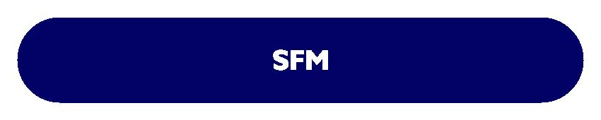 CA FINAL SFM