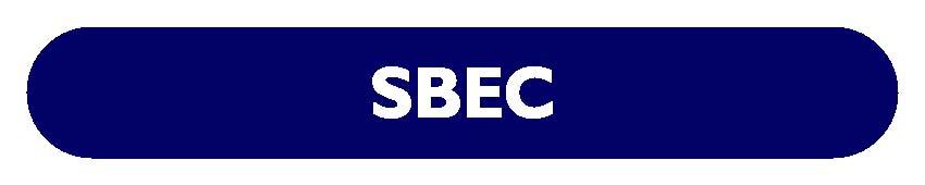 CS EXECUTIVE SBEC