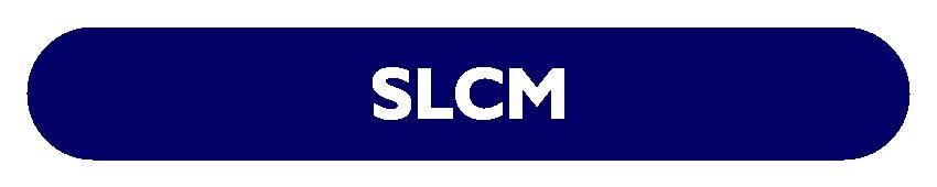 CS EXECUTIVE SLCM
