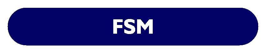 CS EXECUTIVE FSM