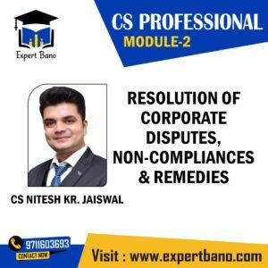 CS PROFESSIONAL MOD 2